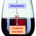 Articolo di M.Moutounet e Jean Claude Vidal dell'INRA FRANCE: la misura dell'ossigeno disciolto in cantina