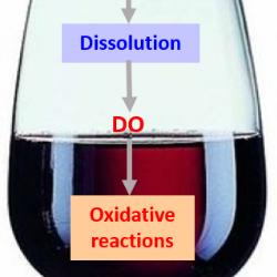 Articolo di M.Moutounet e Jean Claude Vidal dell'INRA FRANCE: la misura dell'ossigeno discilto in cantina