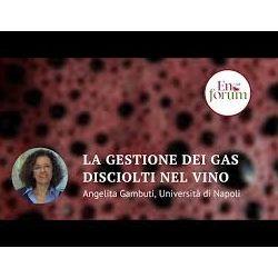 Intervento fatto sulla gestione dei gas disciolti nel vino ad Enoforum 2019